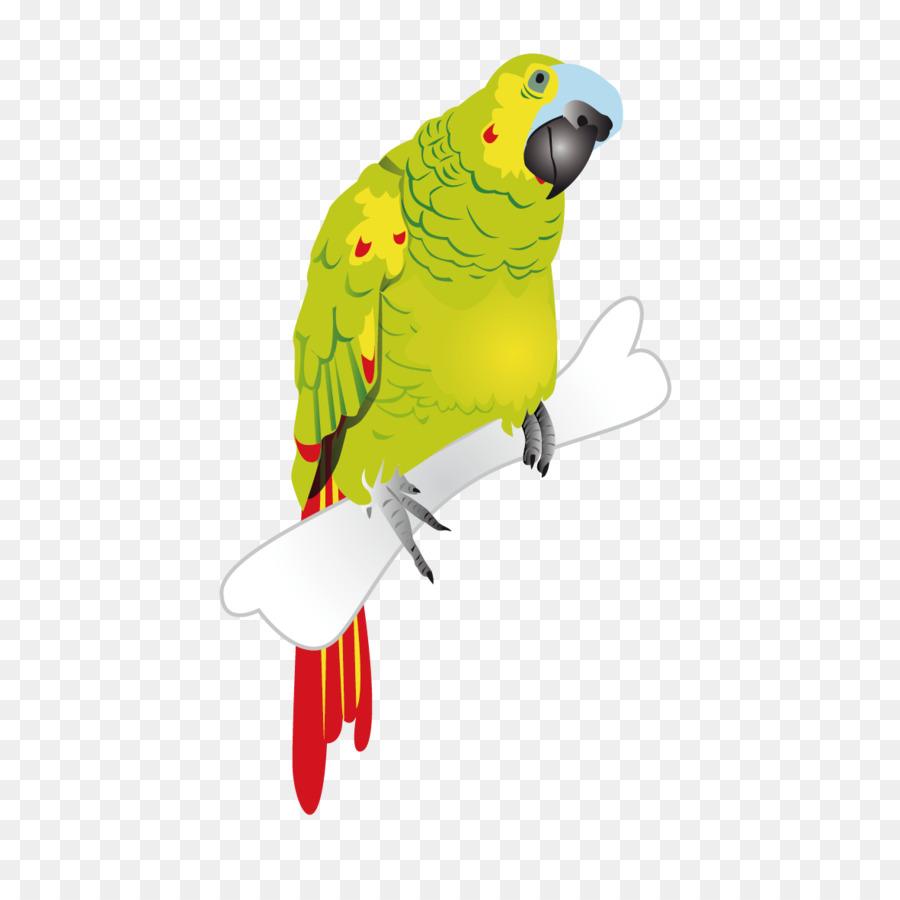 Лекарствами, открытка попугай с пистолетом