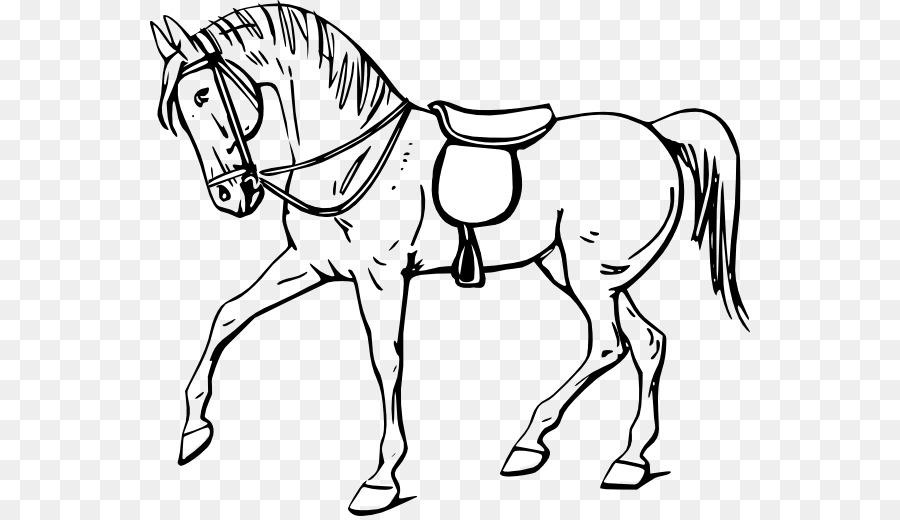 Tennessee Yürümek At çizim Kitabı Küçük Resim Boyama