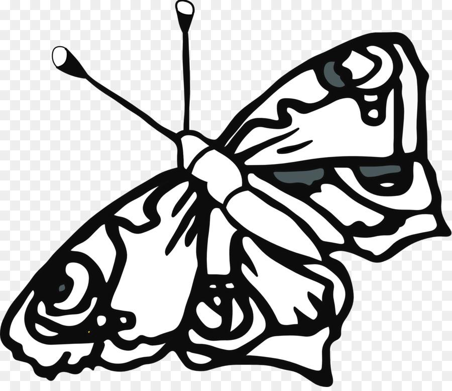 Kelebek Kitap Cizim Hat Sanati Kucuk Resim Boyama Kelebek