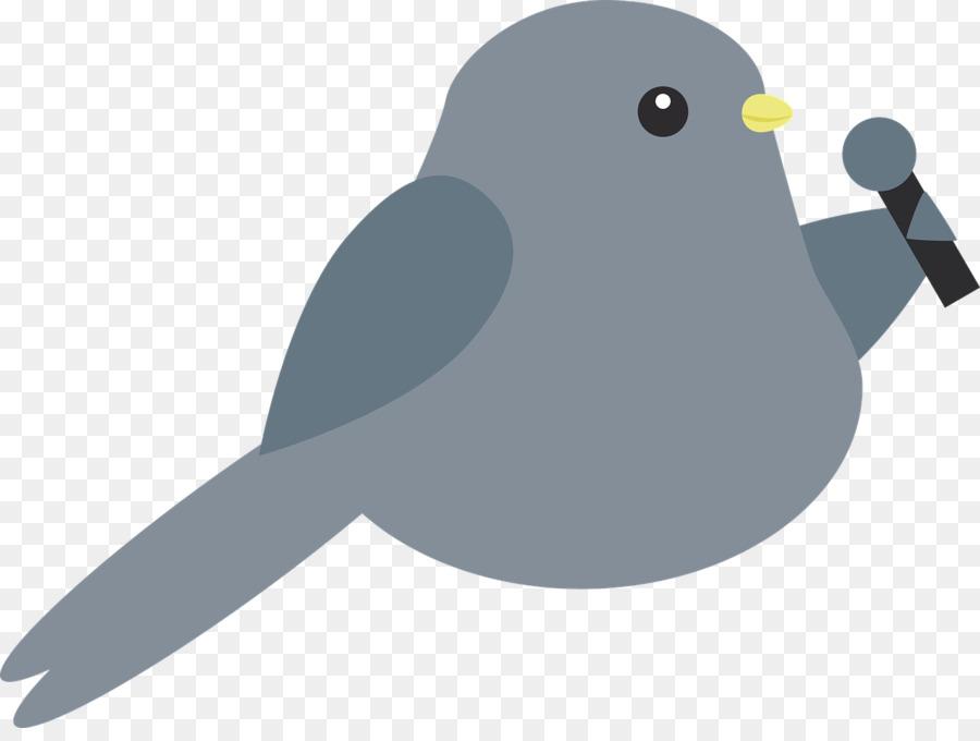 Поющие птички картинки