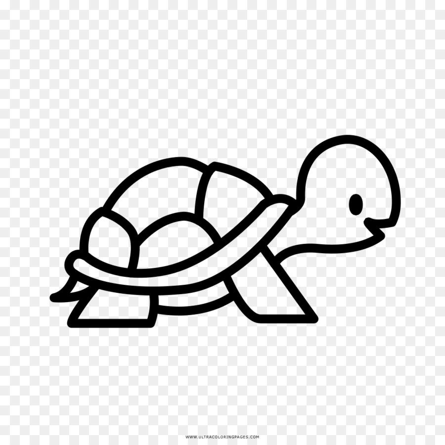 Kaplumbaga Cizimi
