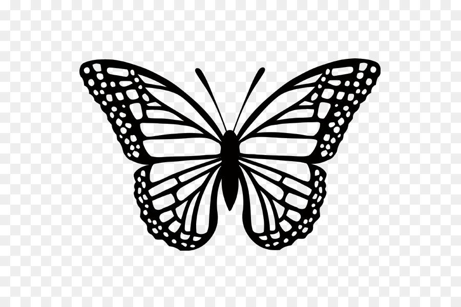 Monarch Kelebek Kucuk Resim Illustrasyon Kelebek Boyama Seffaf